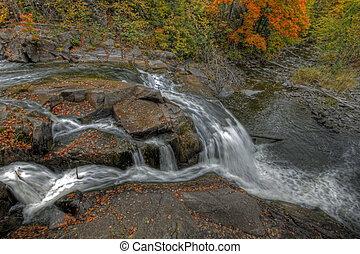 outono, floresta, e, paisagem rio, 52