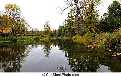 outono, floresta, e, paisagem rio, 93
