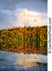 outono, floresta lago