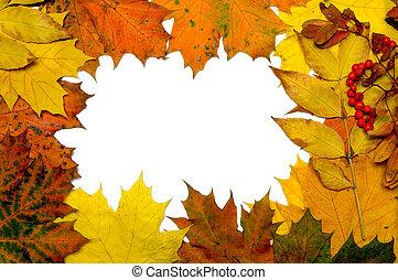 outono, folha baixa, quadro
