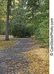 outono, folha, outono, parque