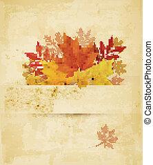 outono, fundo, com, leaves., vector.