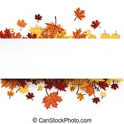 outono, fundo, com, maple, leaves.
