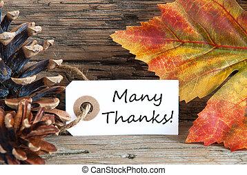 outono, fundo, com, muitos, obrigado