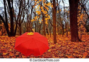 Outono, guarda-chuva