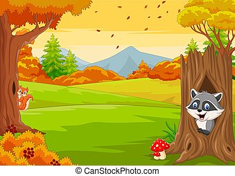 outono, guaxinim, caricatura, esquilo, floresta