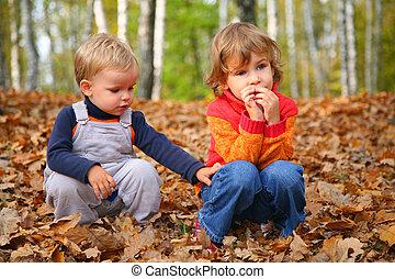 outono, irmã, parque, irmão, crianças