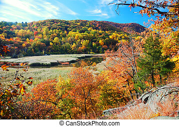 outono, lago montanha