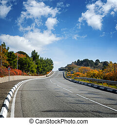 outono, largo, estrada, árvores, entre