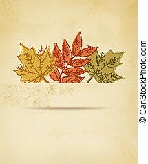 outono, leaves., fundo, vector.