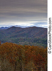 outono, leste, tennessee, perto, foothills, parkway