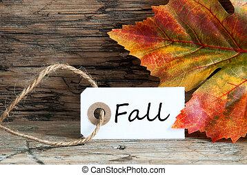 outono, ligado, um, etiqueta