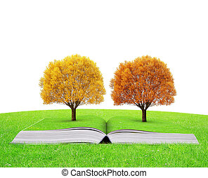 outono, livro, árvores, coloridos, natureza