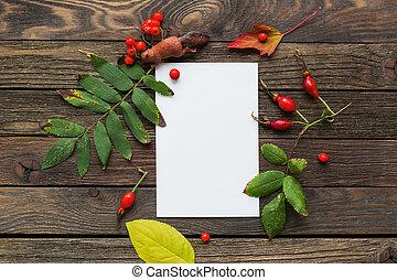 outono, madeira, fundo, com, esquilo, figura, caído, rowan, árvore, folhas, e, berries., claro, papel, para, seu, texto, bom, para, escarneça, cima, designs.