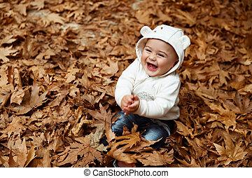 outono, menino, floresta, feliz