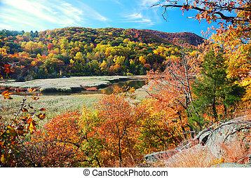 outono, montanha, com, lago