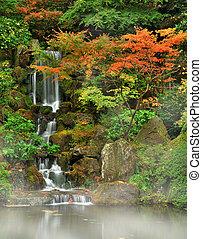 outono, nevoeiro, cachoeira