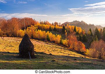 outono, paisagem montanha, vila