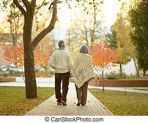 outono, par, parque, idoso