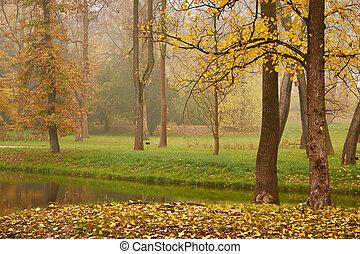 outono, parque