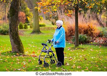 outono, parque, sênior, senhora, caminhante
