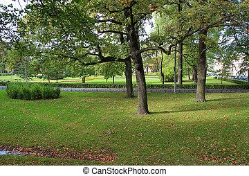outono, parque, um