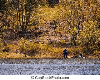 outono, pesca, homem