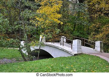outono, ponte, sobre, parque, ravina