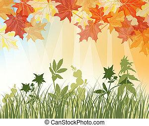 outono, prado, fundo