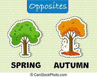 outono, primavera, palavras, oppesite