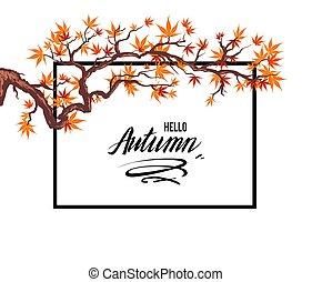 outono, quadro, folhas
