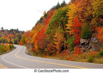 outono, rodovia