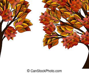 outono sai, árvore, amarela