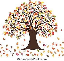 outono sai, árvore, cores