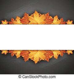 outono sai, blackboard., maple, fundo