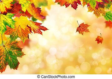outono sai, bokeh, bordered, fundo