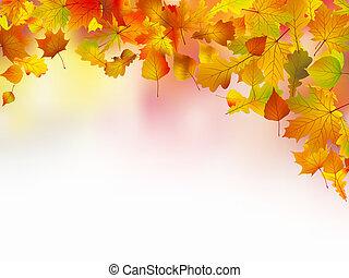 outono sai, borda, para, seu, text.