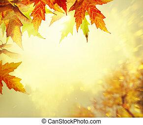 outono sai, fundo amarelo