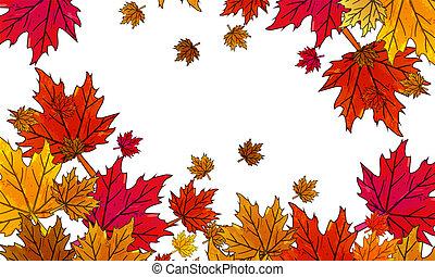 outono sai, fundo branco, multi-colorido