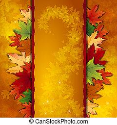 outono sai, fundo, maple