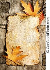 outono sai, ligado, a, antigas, papel, folha