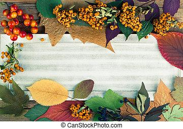 outono sai, ligado, madeira, fundo, espaço