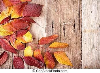 outono sai, ligado, prancha madeira
