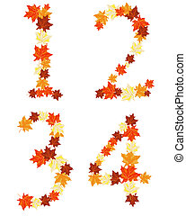 outono sai, maples, letra