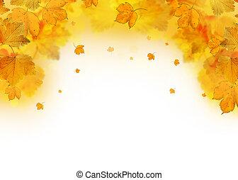 outono sai, queda, quadro