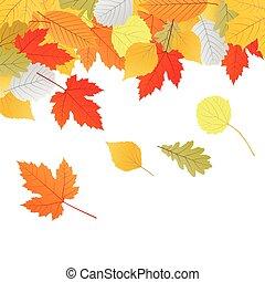 outono sai, vetorial, fundo