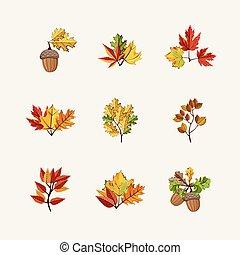outono sai, vetorial, ilustração