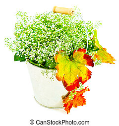 outono sai, wildflowers, balde, &
