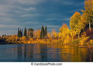 outono, selvagem, taiga, pôr do sol, siberian