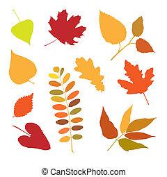 outono, seth, folhas, desenho